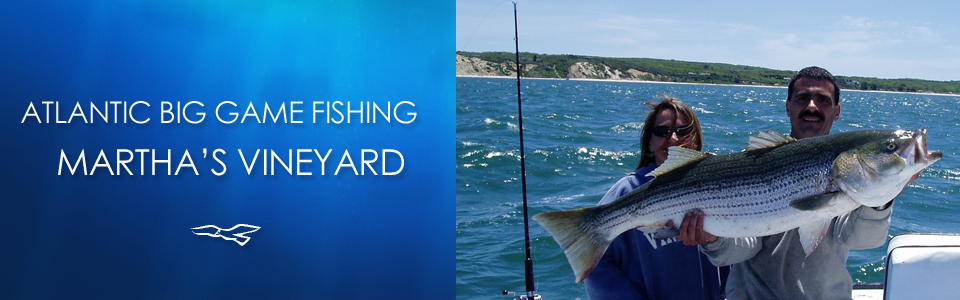 Atlantic Big Game Fishing Martha's Vineyard